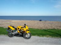 Honda CBR600 F4 by the water
