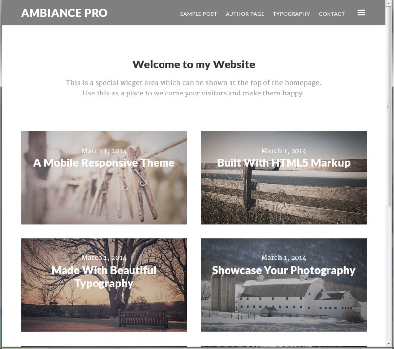 Best Photography WordPress Themes - Ambiance Theme