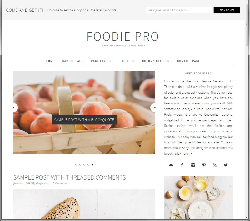 Best Food WordPress Themes - Foodie Pro Theme