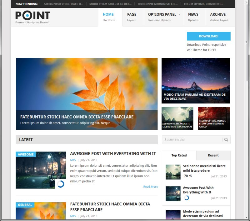 How to Choose a WordPress theme free - Point Theme